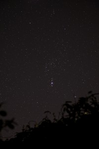Orion - Click to enlarge