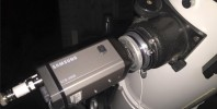 Samsung SCB-2000 attached to my f/6 Newt