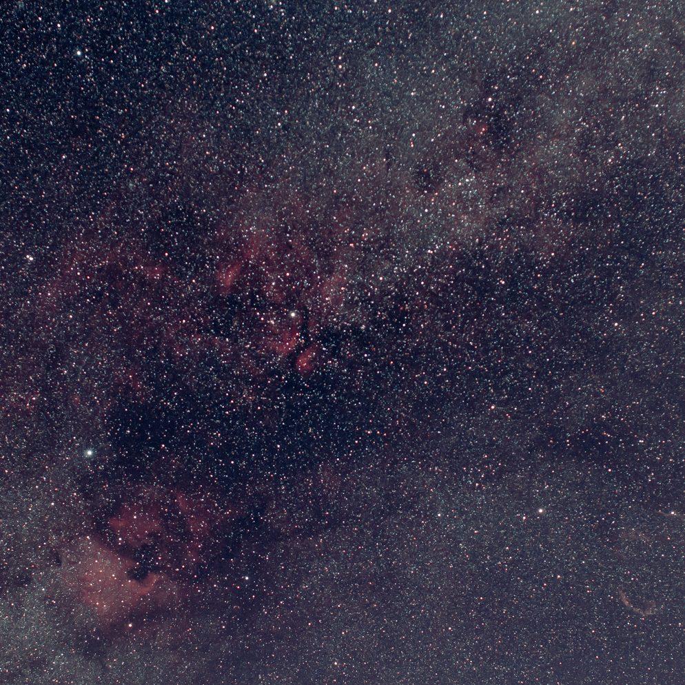 Cygnus Widefield